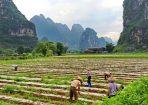 טיולים מאורגנים לסין לשומרי מסורת