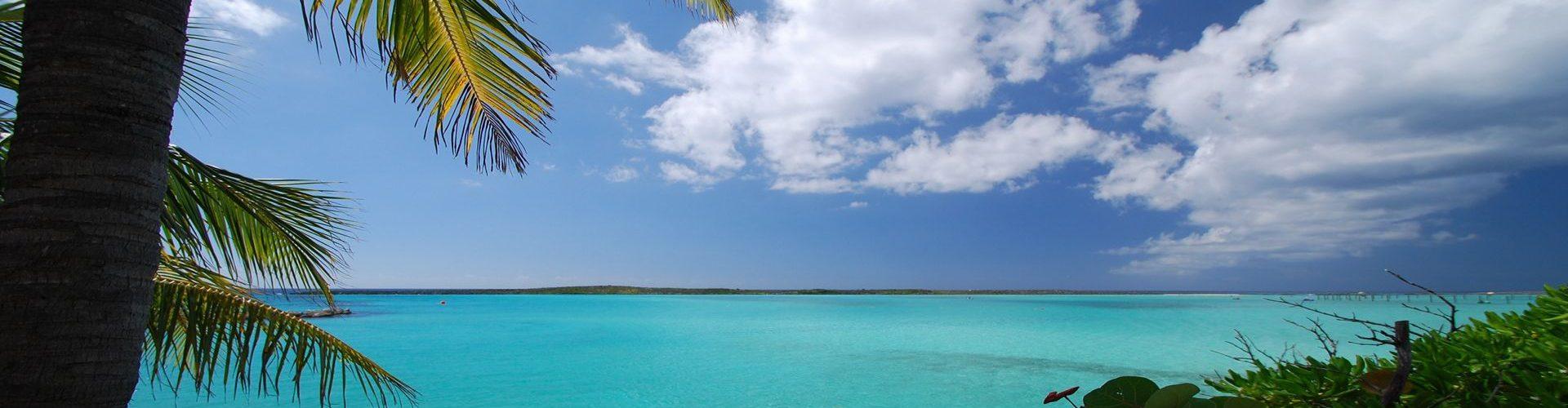 נוף וטיפוסי בקריביים